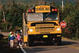http://www.tc.gc.ca/roadsafety/childsafety/bbtr/schoolbus.htm