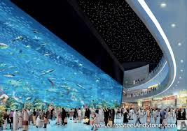 Shark Diving in The Dubai Mall