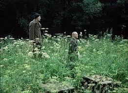 نمایی  از  فیلم استاکر . منطقه