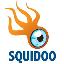 Picture of Squidoo