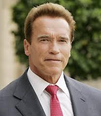 Schwarzenegger codes