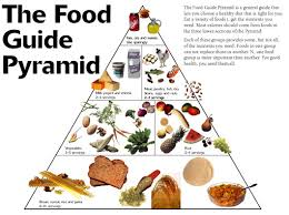 {Food Guide Pyramid}