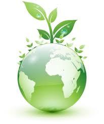 Les énergies renouvelables, source d'emplois verts pour les pays ...