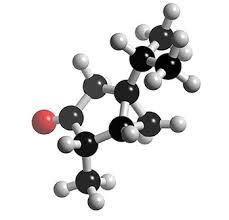단백질 구조, 몰(.MOL) 파일 구조 (.MOL File format)[.Mol,protein,단백질,구조,파일구조]