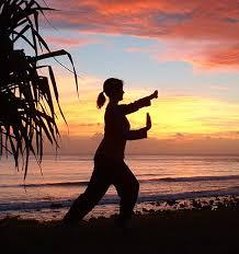 태극권 수련일기 [태극권,Tai Chi,수련일기,중국무술,martial arts]